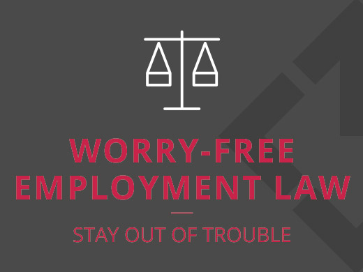 Employment law support